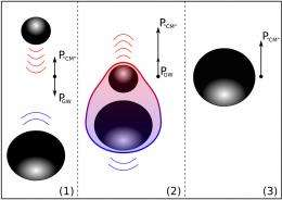 On the deceleration behaviour of black holes