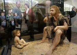 A Neanderthal man ancestor's reconstruction