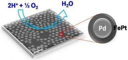 Brown chemists report promising advance in fuel-cell technology