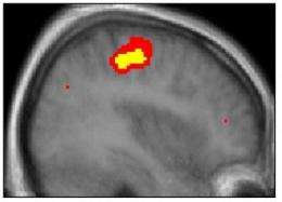 I win, you lose: Brain imaging reveals how we learn from our competitors