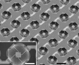 Microsensors offer first look at whether cell mass affects growth rate