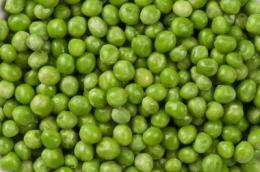 Perfect peas to push profits and cut carbon