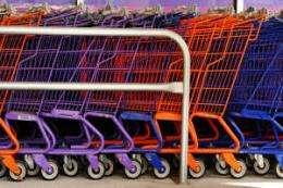 Researchers test green shopping scheme