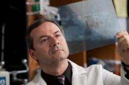 Scientists bioengineer a protein to fight leukemia
