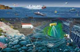 Speed installation of system to monitor vital signs of global ocean, scientists urge
