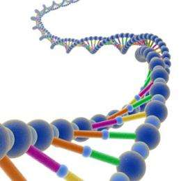 Unraveling the DNA stretching mystery