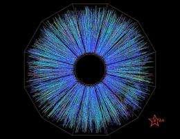 Grant advances quark-gluon plasma studies