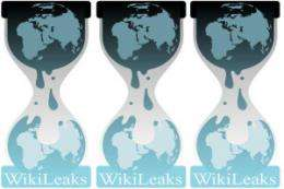 Researchers say WikiLeaks damaged American power