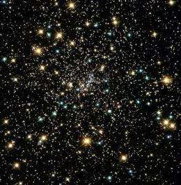 NASA image shows clusters of stars
