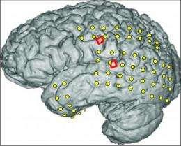 The brain speaks