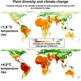 Global warming threatens plant diversity
