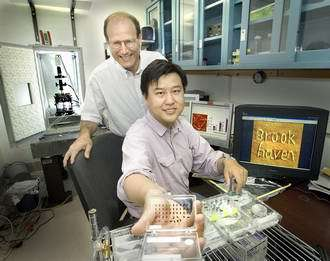 Physicists Benjamin Ocko (L) and Yuguang Cai.