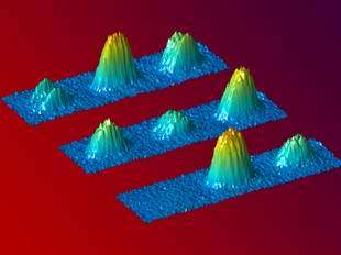 Physicists show coherence of Bose-Einstein condensates extends to spin state of atoms