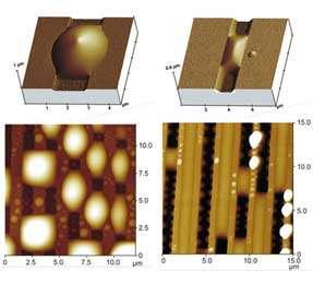 liquid morphologies on silicon substrates