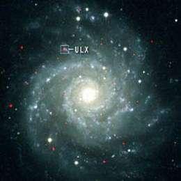 X-Rays signal presence of elusive intermediate-mass black hole
