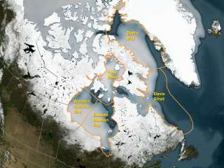 Warming Climate May Put Chill on Arctic Polar Bear Population