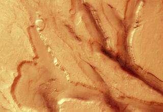 Extensional tectonics in Tempe Terra