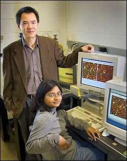 Stan Wong and Mandakini Kanungo