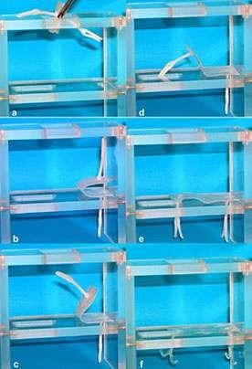 Agile new plastics change shape with heat
