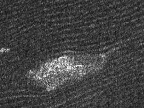 Detail from a Cassini radar image of sand dunes on Titan