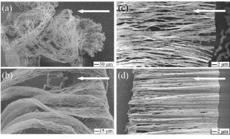 Electric field can align silver nanowires