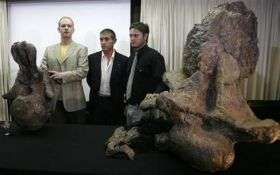 105-Foot Dinosaur Unearthed in Argentina (AP)