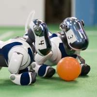 Atlanta gets ready for RoboCup 2007