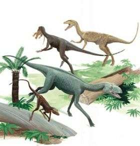 Dinosaurs, Non-dinosaur Ancestors Coexisted
