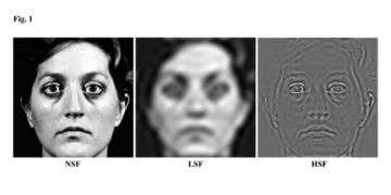 Distorted self-image the result of visual brain glitch, study finds