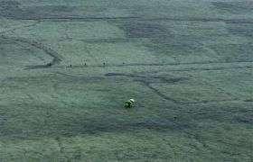 Group Touts Seaweed As Warming Weapon (AP)