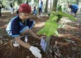 Indonesia Hosting Global Warming Talks (AP)
