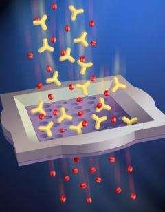 Membrane Sorts Molecules
