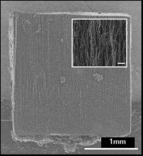 Nanotube Block -- Before Compression