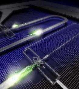 NIST Quantum Cable