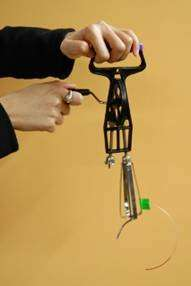 $2 egg-beater could save lives in developing countries