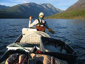 Researchers study spread of lake trout in Glacier National Park