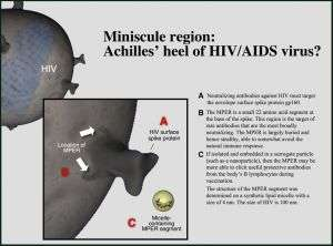 Scientists may have identified new target for HIV vaccine