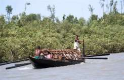 Devastation from the cyclone Sidr, in 2007