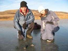Buzzard Coulee Meteorite Find