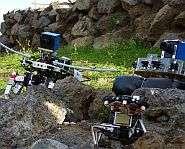 Designing bug perception into robots