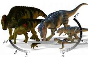 Duck-billed dinosaurs outgrew predators to survive
