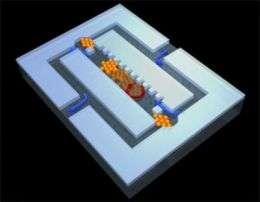 Microspheres in a Magnetic Feld