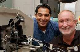 Net widens as more proteins implicated in cancer spread