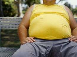 No link between gut bugs and obesity