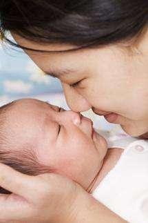 Parental instinct found in the brain
