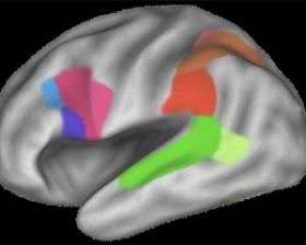 Passive learning imprints on the brain just like active learning
