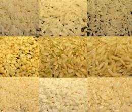 Rice grown in United States contains less-dangerous form of arsenic