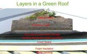 Side View of Green Roof Layers