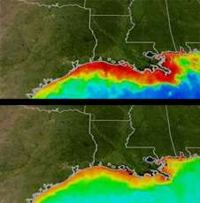 Summer Storms Could Mean More Dead Zones