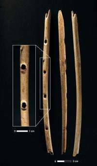 Prehistoric flute in Germany is oldest known